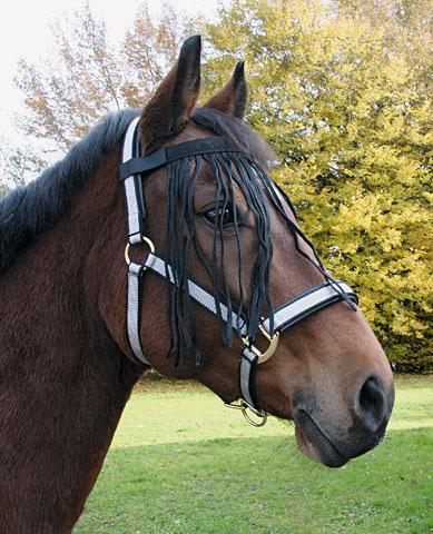 Fotografie Čabraka pro koně proti hmyzu černé velikost PONY