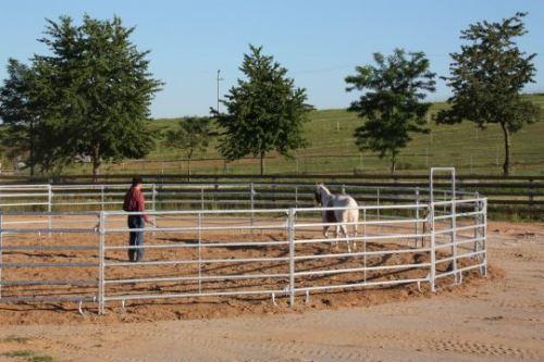 Kruhová mobilní jízdárna pro koně průměr 13,5 m