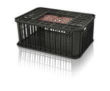 Přepravní box na živou drůbež plastový nosnost 25 kg