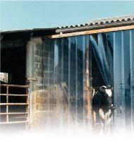 Lamelová clona PVC dveřní La GÉE 300 x 3 mm role 25 m pro zvířata