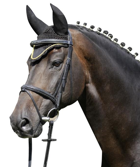 Fotografie Čabraka HKM na uši koní se stříbrným lemem černá velikost 3