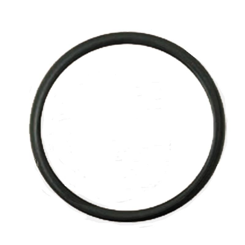 O-kroužek pro vodní čerpadlo vhodné pro Case IH MX, Maxxum