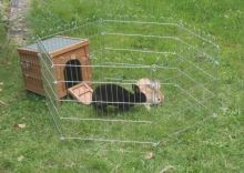 Domek pro králíky HUTCH do výběhů pro králíky