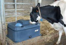 Misková napáječka La GÉE Polytherme 1B 40  pro koně, dobytek, kozy a ovce s jednou miskou