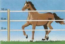 Sada na elektrický ohradník pro koně a hříbata 200 m
