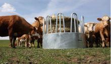 Krmelec na seno kruhový pro koně a skot 2-dílný 8 míst průměr 170 cm příkrmiště na balíky