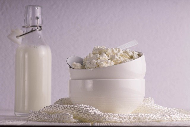 Sada na domácí mléčné výrobky měkké sýry, zákys, tvaroh, jogurt, kefír pro začátečníky