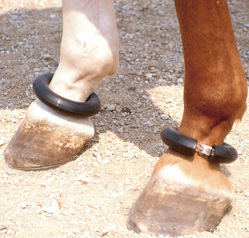Ochranný kroužek na nohy koní gumový