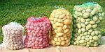 Pytle rašlové 35 x 50 cm (5 kg) na brambory, zeleninu a ovoce balení 5 ks a 100 ks