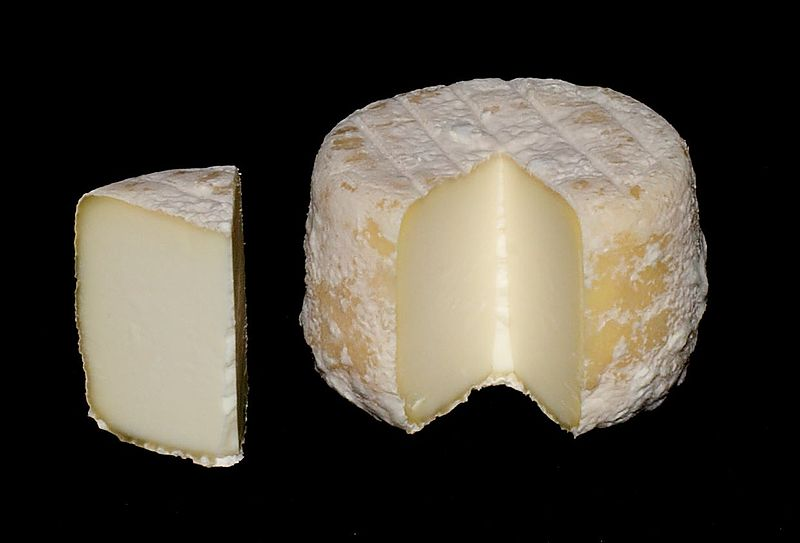 IOTA CL1 na kozí sýry šedé barvy 200 l mléka směs kultur a šedá plíseň Geotrichum Candidum