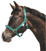 Ohlávka pro koně nylonová s bandáží barva zelená velikost 3