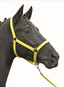 Stájová ohlávka pro koně HKM Stars Softice