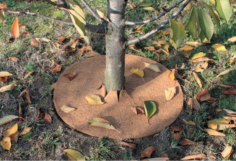 Mulčovací podložka z juty ke stromkům balení 10 ks