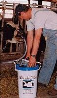Drenčovací pumpa Drench-Mate pro krávy
